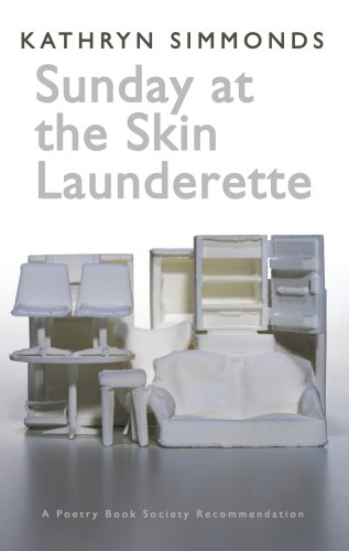 9781854114617: Sunday at the Skin Launderette (Poetry Book Society Recommendation)