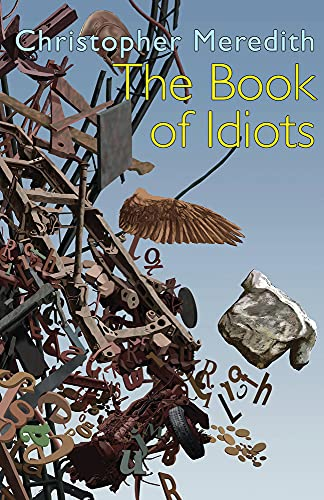 The Book of Idiots: Meredith, Christopher