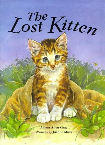 9781854304728: The Lost Kitten!