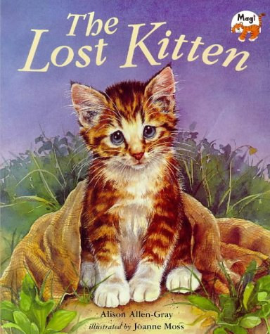 9781854304735: The Lost Kitten!