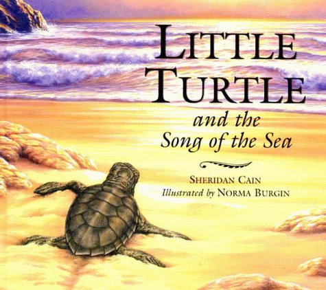 9781854306197: Little Turtle and the Song of the Sea