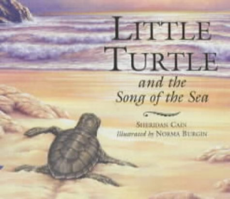 9781854306203: Little Turtle and the Song of the Sea