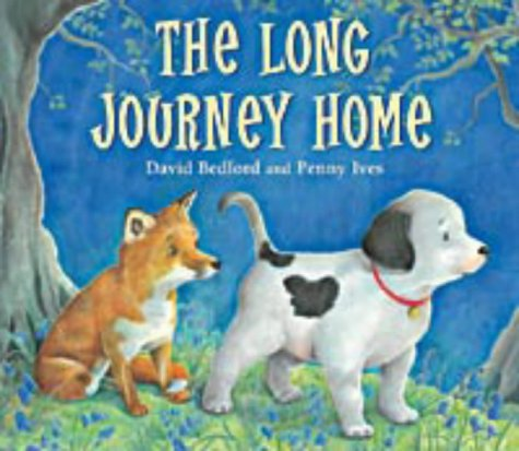9781854307477: The Long Journey Home