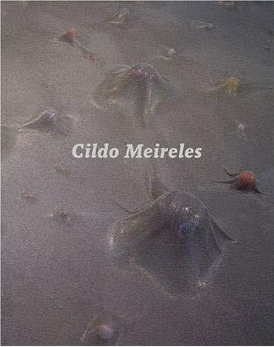 Cildo Meireles: Guy Brett