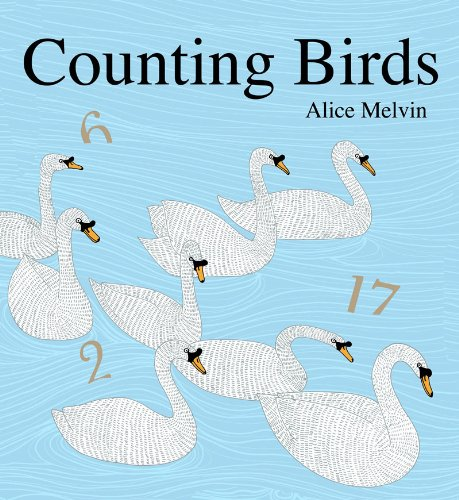 9781854378552: Counting Birds