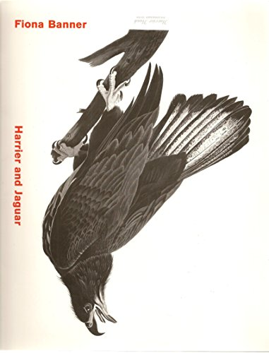 Fiona Banner: Harrier and Jaguar/Anglais: Carey Lizzie