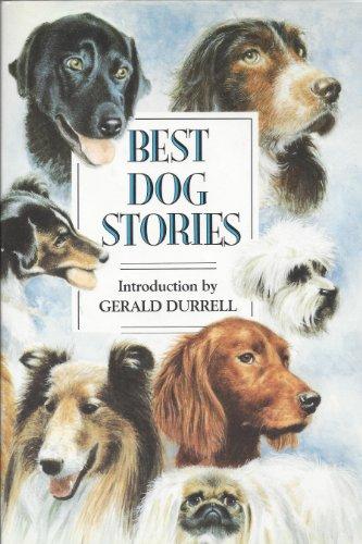 9781854790811: Best Dog Stories