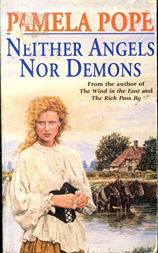 9781855017115: Neither Angels Nor Demons