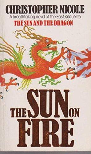 9781855017207: The Sun on Fire