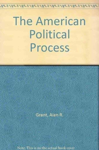9781855211315: The American Political Process