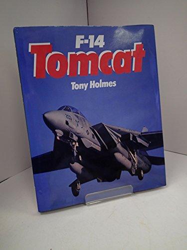 F-14 Tomcat: Holmes, Tony