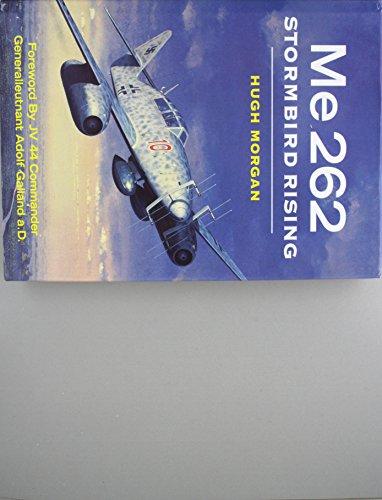Stormbird Rising ME 262: Hugh Morgan