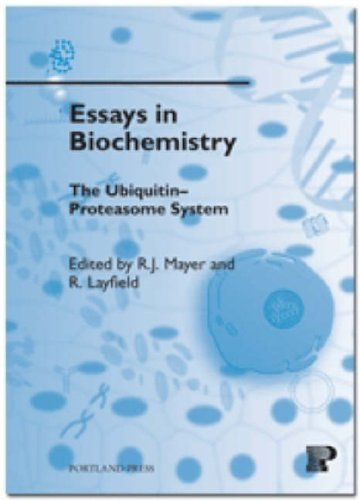 9781855781535: The Ubiquitin-proteasome System: 41 (Essays in Biochemistry)