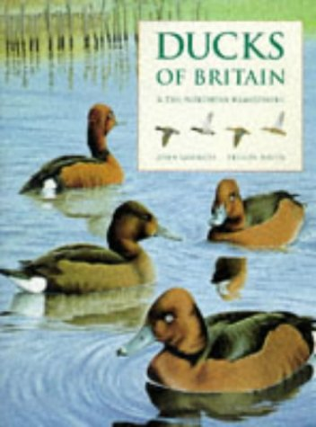 9781855855700: Ducks of Britain and the Northern Hemisphere