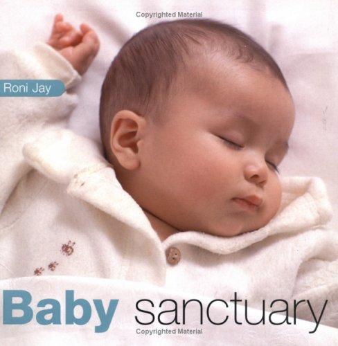 9781855859883: Baby Sanctuary