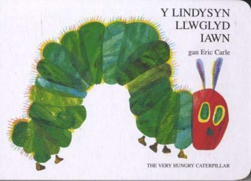 9781855967830: Lindysyn Llwglyd Iawn, Y / Very Hungry Caterpillar, The
