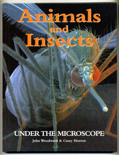 9781856053648: Animals and Insects