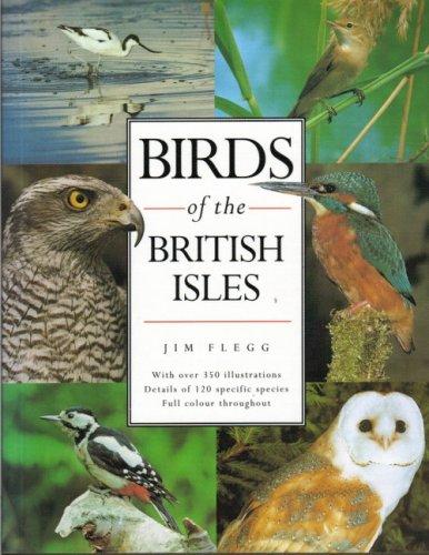 Birds of the British Isles: JIM FLEGG