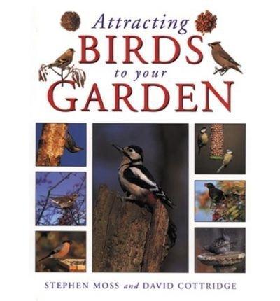 9781856058452: Attracting Birds to Your Garden