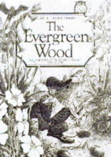 9781856081450: The Evergreen Wood