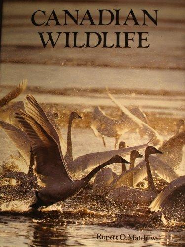 9781856130981: Canadian Wildlife