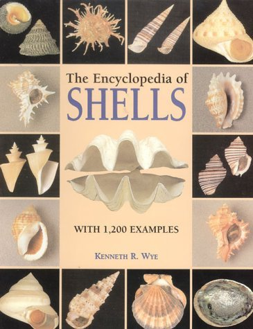 9781856279765: Encyclopedia of Shells