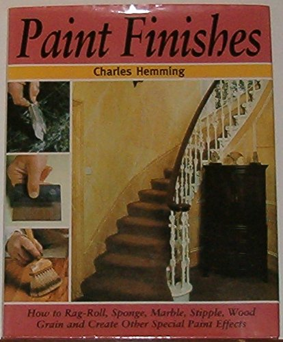 9781856279987: Paint Finishes