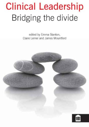 9781856423984: Clinical Leadership: Bridging the Divide