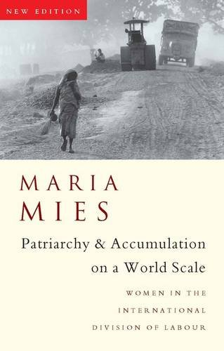 9781856497343: Patriarchy and Accumulation On A World Scale: Women in the International Division of Labour (Critique Influence Change)
