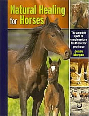 9781856751339: Natural Healing for Horses : The Complete Guide to Complementary Health Care for Your Horse