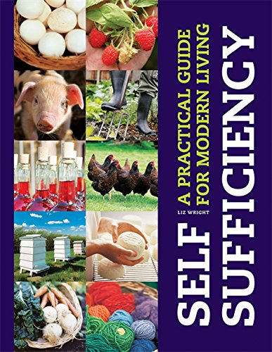 9781856753135: Self-sufficiency
