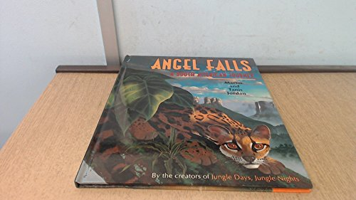 9781856973151: Angel Falls: A South American Journey