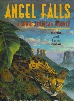 9781856975414: Angel Falls: A South American Journey