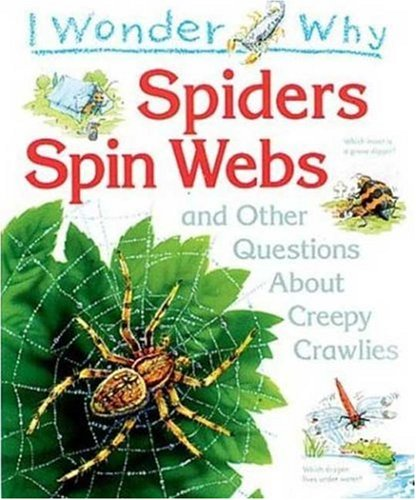 9781856975810: I Wonder Why Spiders Spin Webs: and Other Questions About Creepy Crawlies