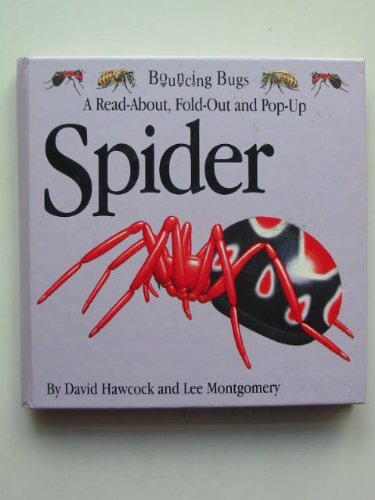 9781857070484: Spider (Bouncing Bugs)