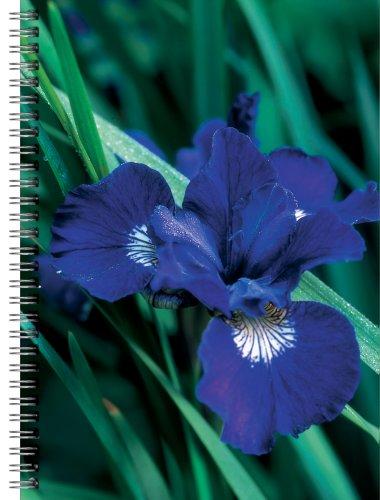 9781857142310: Iris Flower Notebook