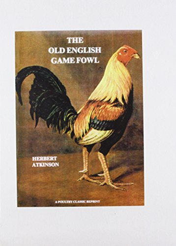 9781857361339: Old English Game Fowl