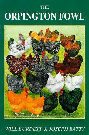 9781857363432: The Orpington Fowl