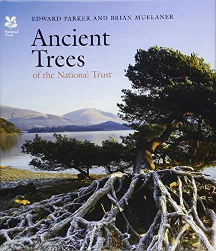 9781857599442: Ancient Trees of the National Trust