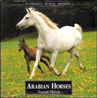 9781857780727: Arab Horses (Sunburst Horse Breeds)