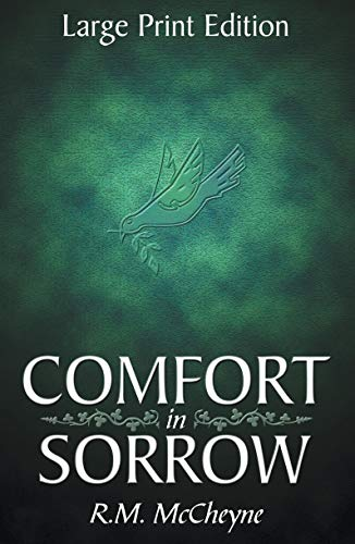 9781857920123: Comfort in Sorrow (Large Print Edition)