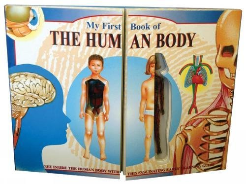 9781858303772: My First Book of the Human Body