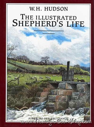 Illustrated Shepherds Life (9781858911083) by Hudson, W H