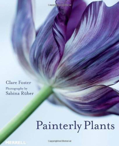 9781858945552: Painterly Plants