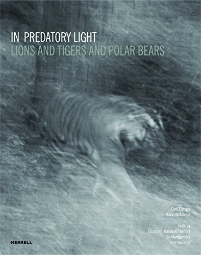 In Predatory Light: Lions and Tigers and Polar Bears: Merrell Publishers