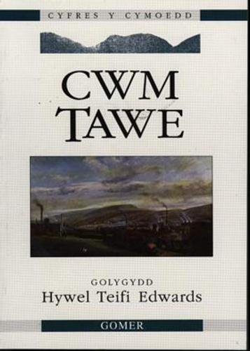 9781859020012: Cyfres y Cymoedd: Cwm Tawe