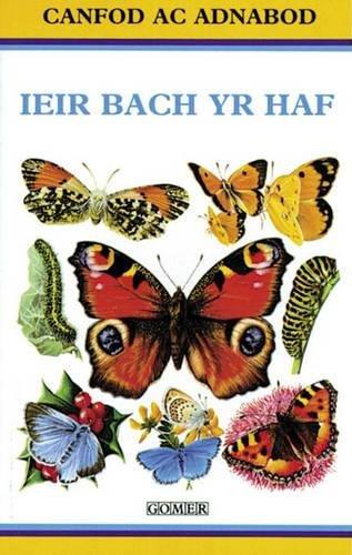 Cyfres Canfod ac Adnabod: Ieir Bach yr: George E. Hyde