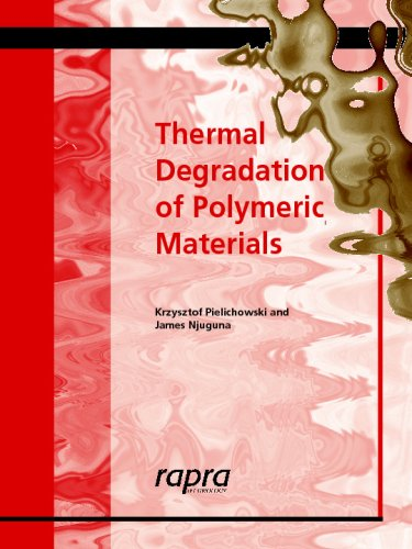 9781859574980: Thermal Degradation of Polymeric Materials