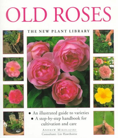 9781859673898: Old Roses (The New Plant Library)