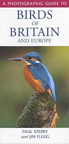 Photographic Guide to the Birds of Britain: Sterry, Paul and